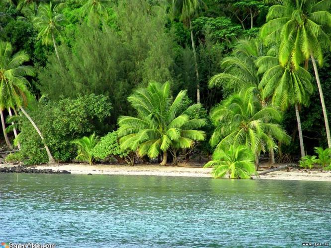 тайны карибского моря скачать игру