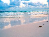 Пляжный отдых из екатеринбурга